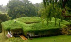 Дом к крышей с озеленением
